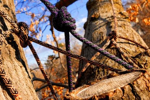 Emergency tree service melbourne eastern suburbs